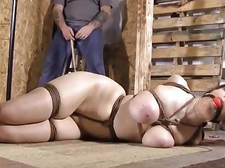 XHamster Porno - Hogtied And Clamped Free Bdsm Hd Porn Video 49 Xhamster